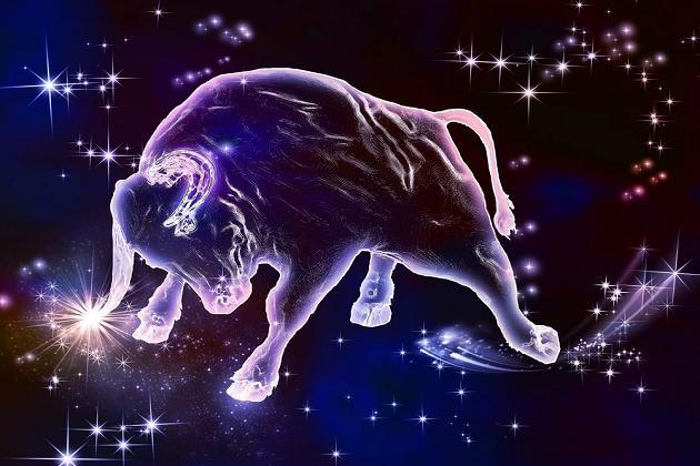 Тельца астрологи считают самым ленивым знаком / фото mlady.org