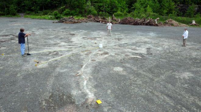 Раскопки у подножья горного хребта Катскиллначались больше 10 лет назад \ CHARLES VER STRAETEN