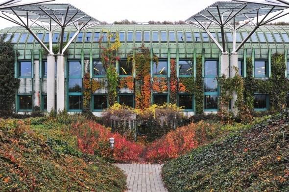 Висячие сады в Варшаве / TripAdvisor