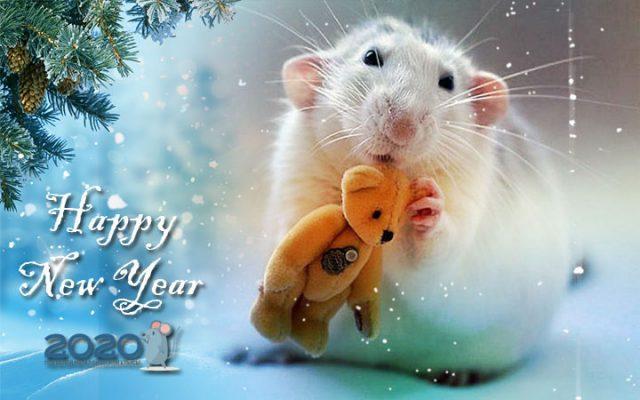 З Новим Роком пацюка