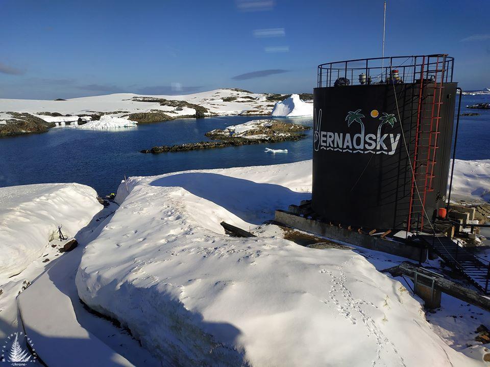 На антарктическую станцию к украинцам пожаловал неожиданный гость /Фото: facebook.com/antarctic2019/