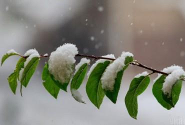 Погода на завтра: местами в Украине пройдут дождь и снег