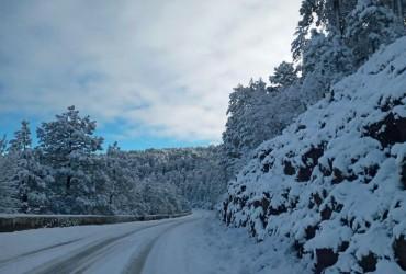 На севере Мексики выпал снег