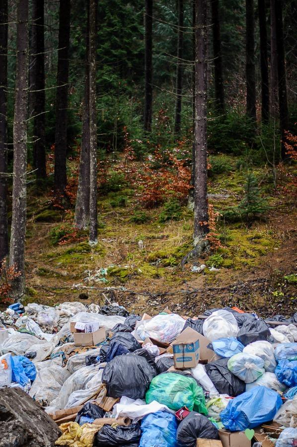 Після святкування Нового року у горах залишилася купа сміття / Фото: Facebook, Зелене серце Карпат