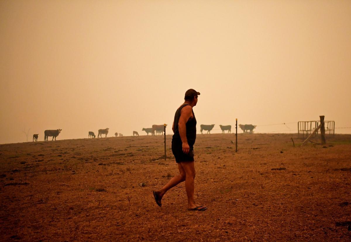 Многие фермеры отказываются уезжать и до последнего остаются на месте / REUTERS