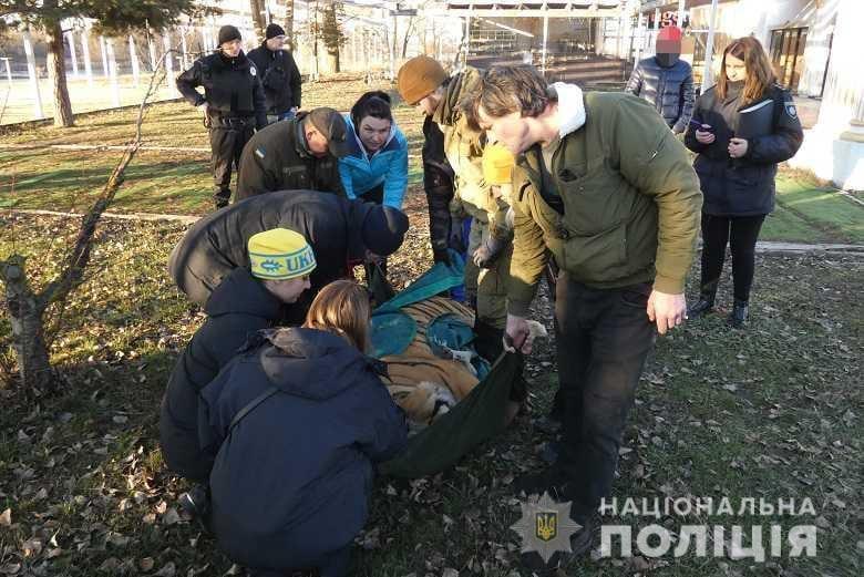 О животных, которые содержатся в ненадлежащих условиях, полиции в конце декабря сообщила жительница Киева / фото kyiv.npu.gov.ua