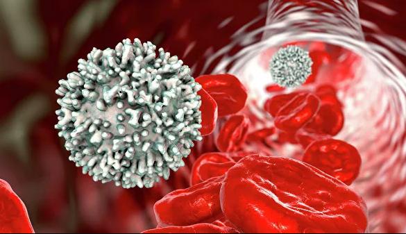 Низький рівень лімфоцитів у крові вказує на підвищений ризик смерті / depositphotos