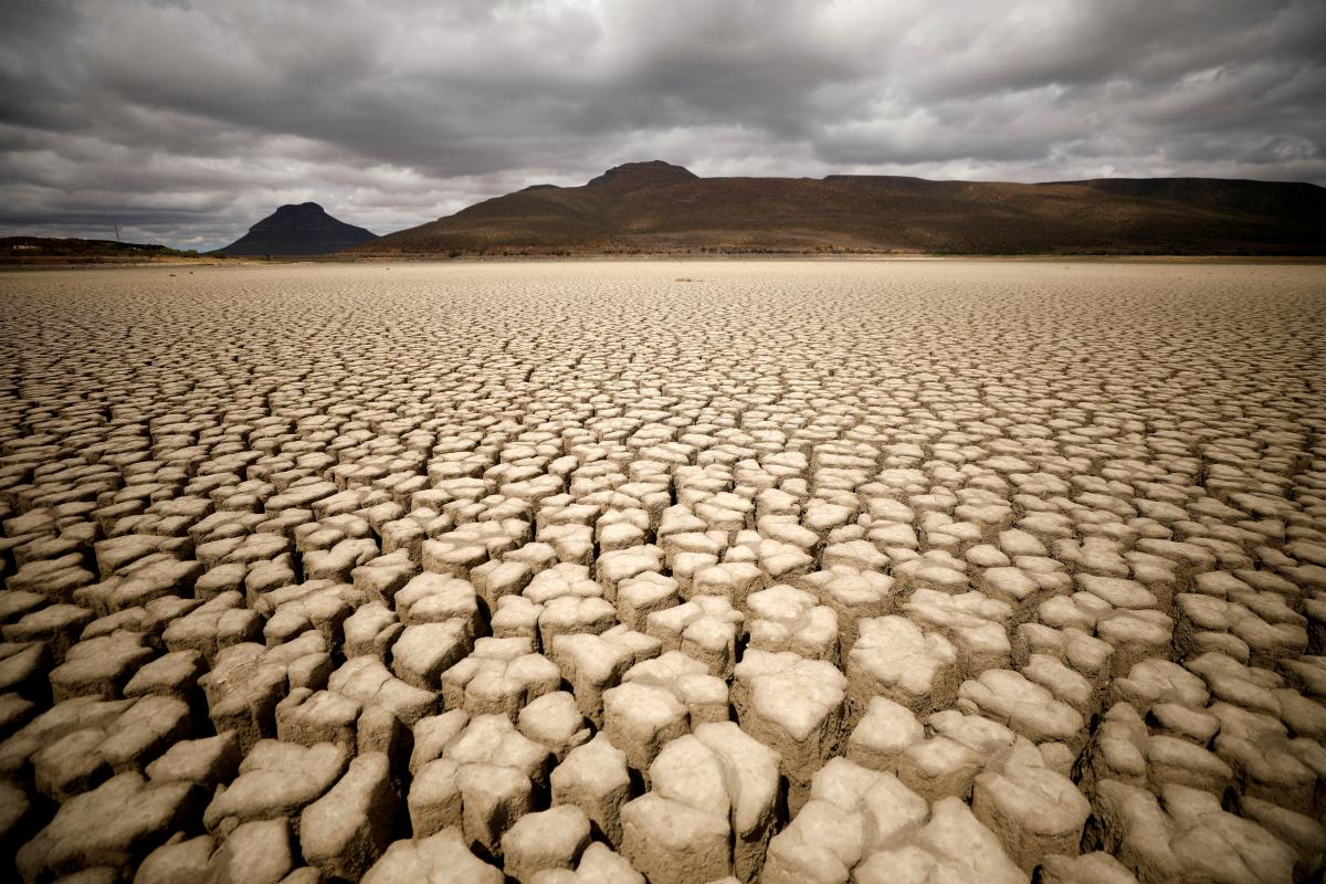 Уявіть собі, місяць нестерпної спеки –під +40, і жодної краплі води/ фото REUTERS