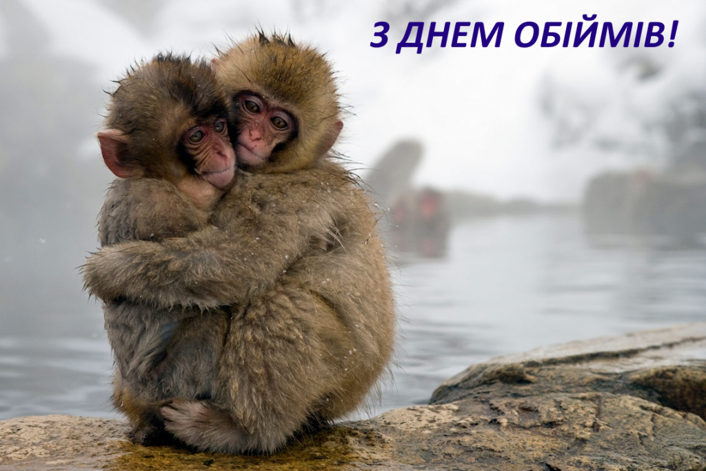 Картинка с Днем объятий / narodna-pravda.ua