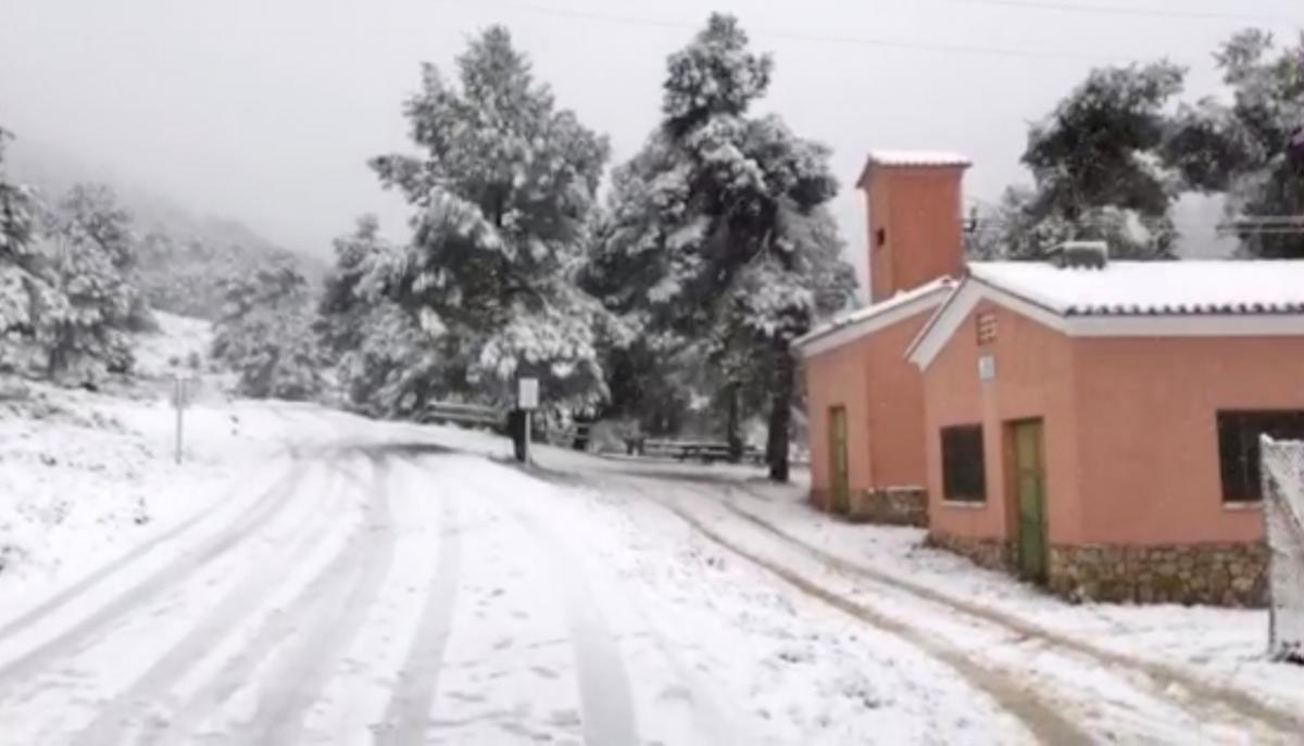 Снігопад в Іспанії / REUTERS