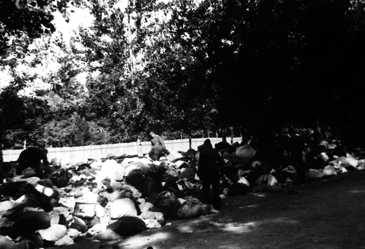 Німці збирають речі розстріляних у Бабиному Яру. Київ, 1941 р. / memory.gov.ua