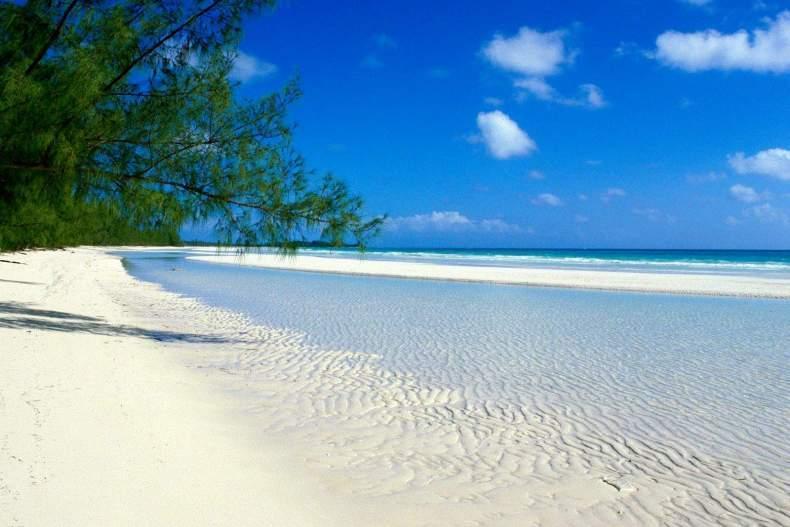 Волонтеры будут помогать восстанавливать коралловые рифы на Багамах / фото: tripmydream.com