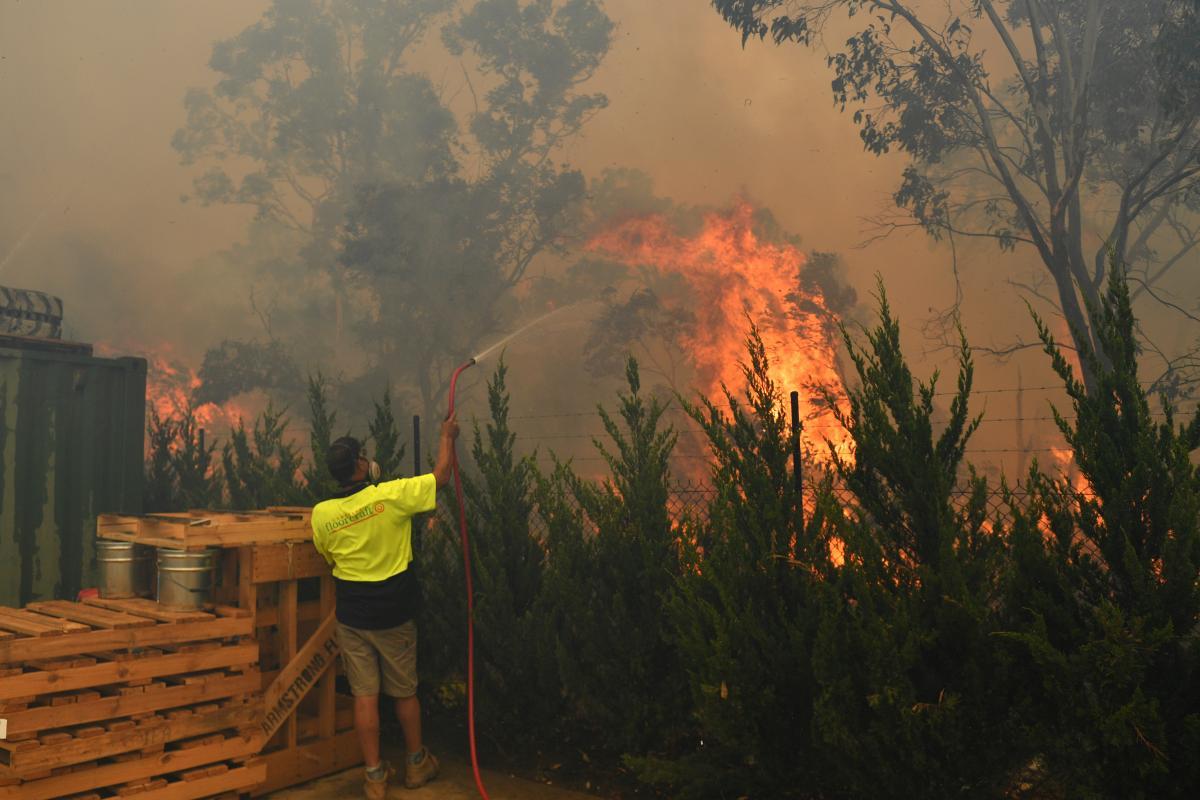 Лісова пожежа в Австралії / REUTERS