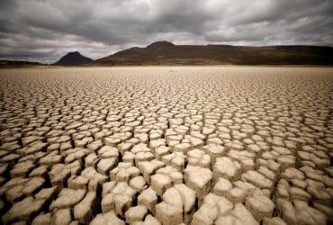 Наводнения, засухи и экзотические животные: эксперты рассказали, как изменится климат Украины через 50 лет