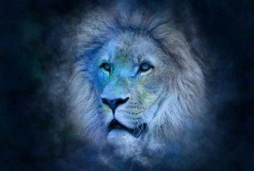 Знак Зодиака Лев: полная характеристика и совместимость с другими знаками