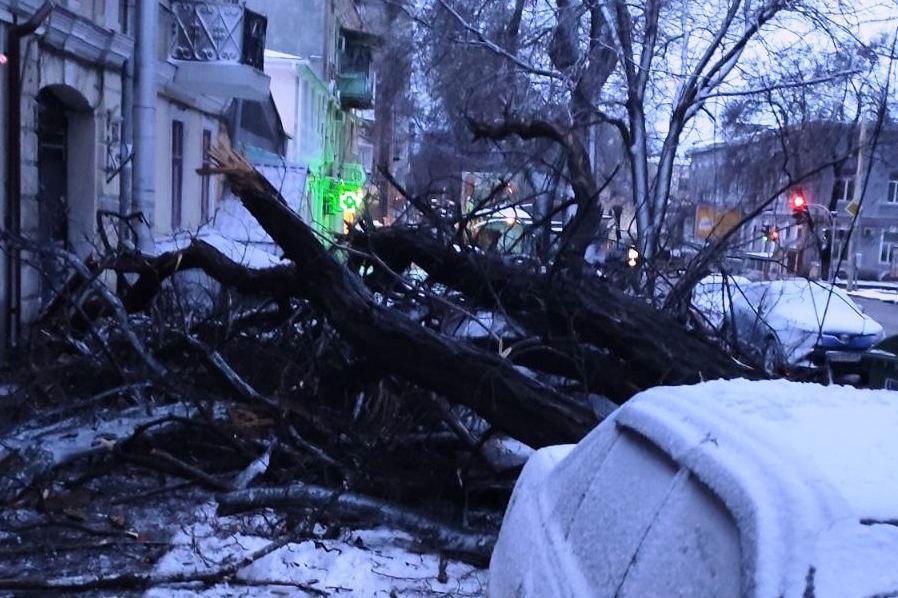 Громадський транспорт функціонує у звичайному режимі / фото прес-служби мерії Одеси