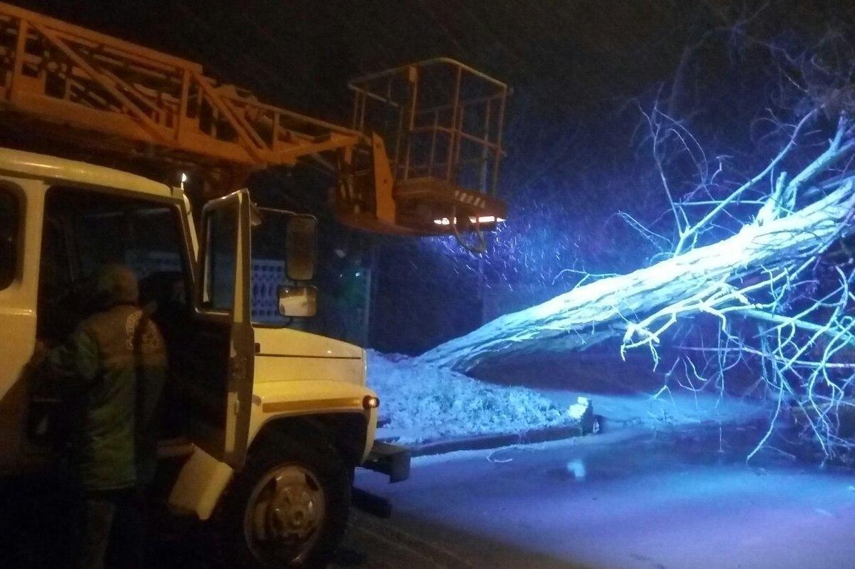 Також зафіксовані численні обриви ліній електропередач / фото прес-служби мерії Одеси