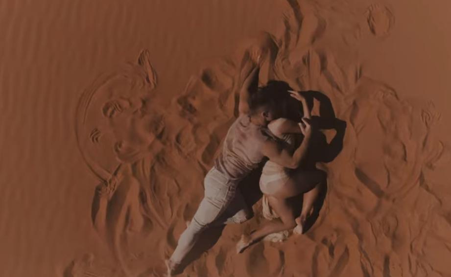 У кліпі Alyosha & Vlad Darwin - це символ Жіночого і Чоловічого начал \ скріншот з відео