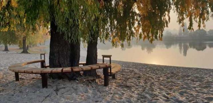 """""""Дерево Цоя"""" - ива высотой 18 метров, которой уже более 60 лет / Фото: КГГА"""