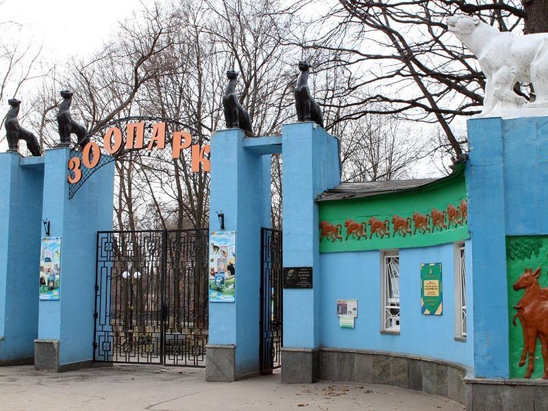 """В зоопарке Харькова идут на """"рекорд"""" / фото anticor-kharkiv.org"""