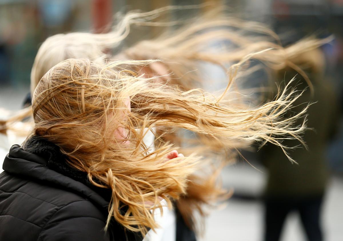 В западных областях ожидаются сильные порывы ветра / Фото REUTERS