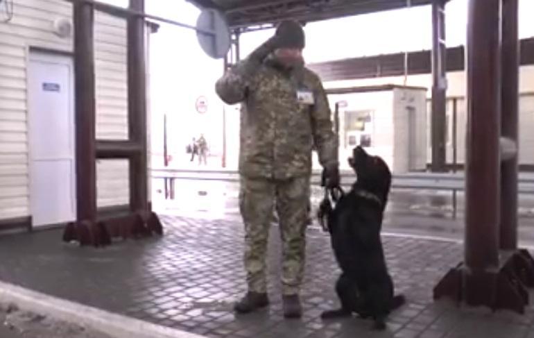 Украинский пограничник и его служебный пес / Скриншот