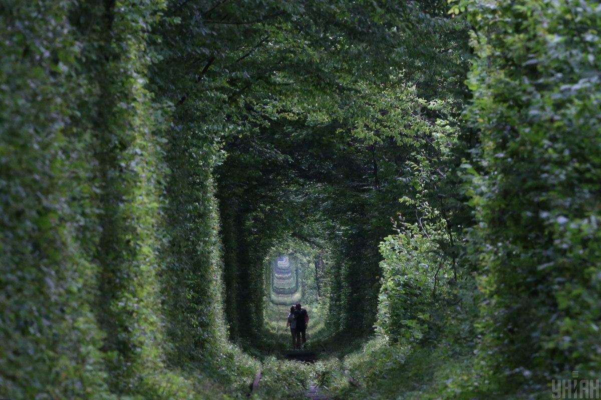 «Тоннель любви» возглавил ТОП-10 наиболее романтических уголков планеты / фото УНИАН