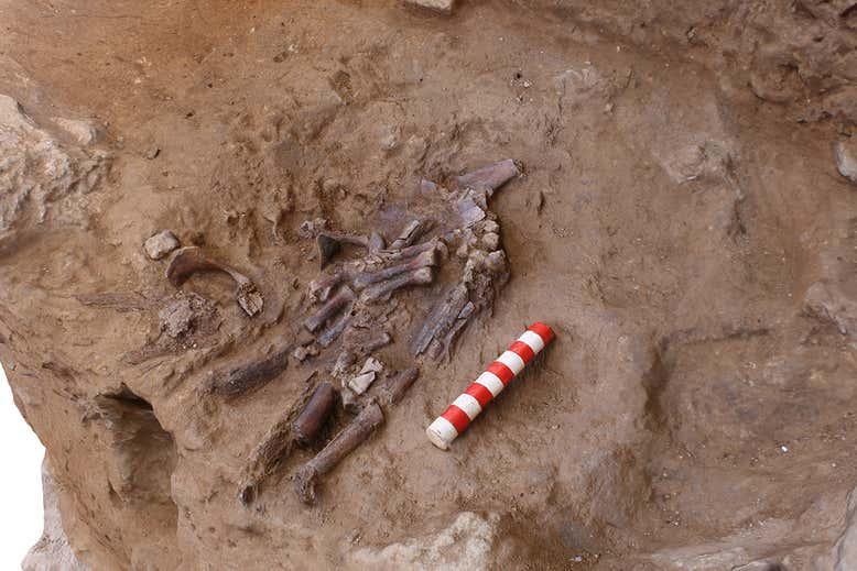 Ученые нашли доказательства того, что неандертальцы хоронили умерших / Фото: Graeme Barker