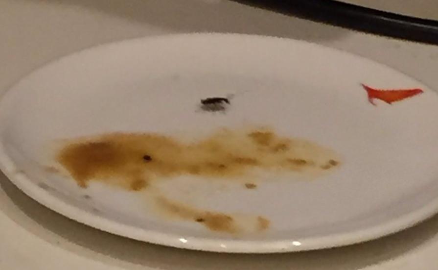 В еде пенсионеры неоднократно находили тараканов / скриншот