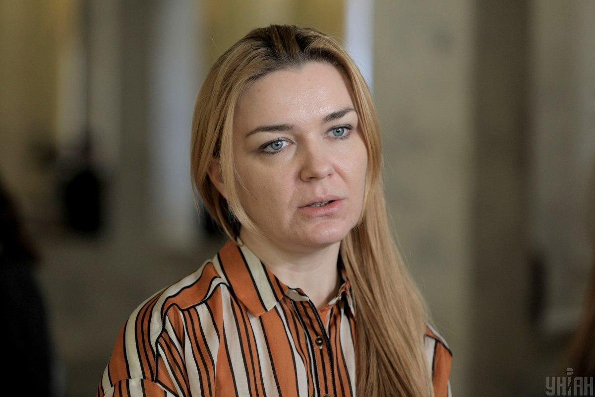 Депутат визнає, що провести вибори в окупації неможливо / фото УНІАН