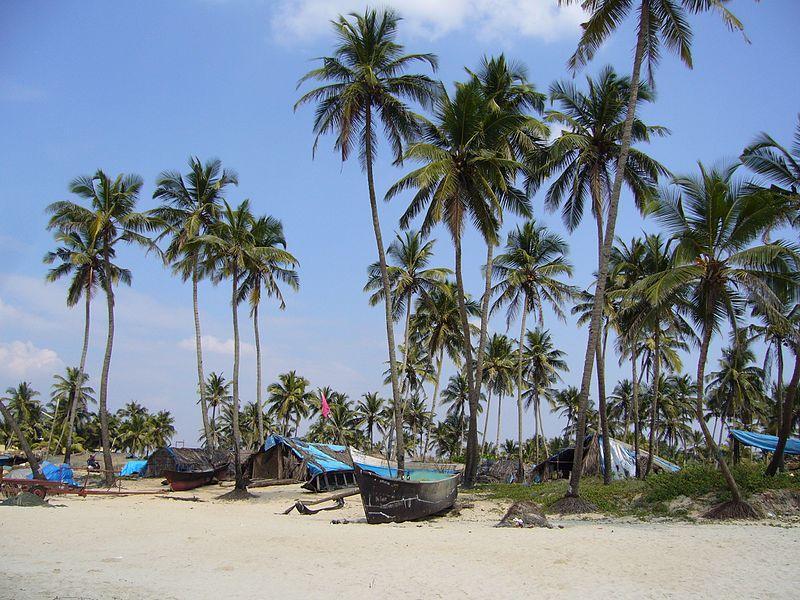 На пляжах Гоа з'являться спеціальні алкогольні зони / Фото en.wikipedia.org/Tanya Dedyukhina