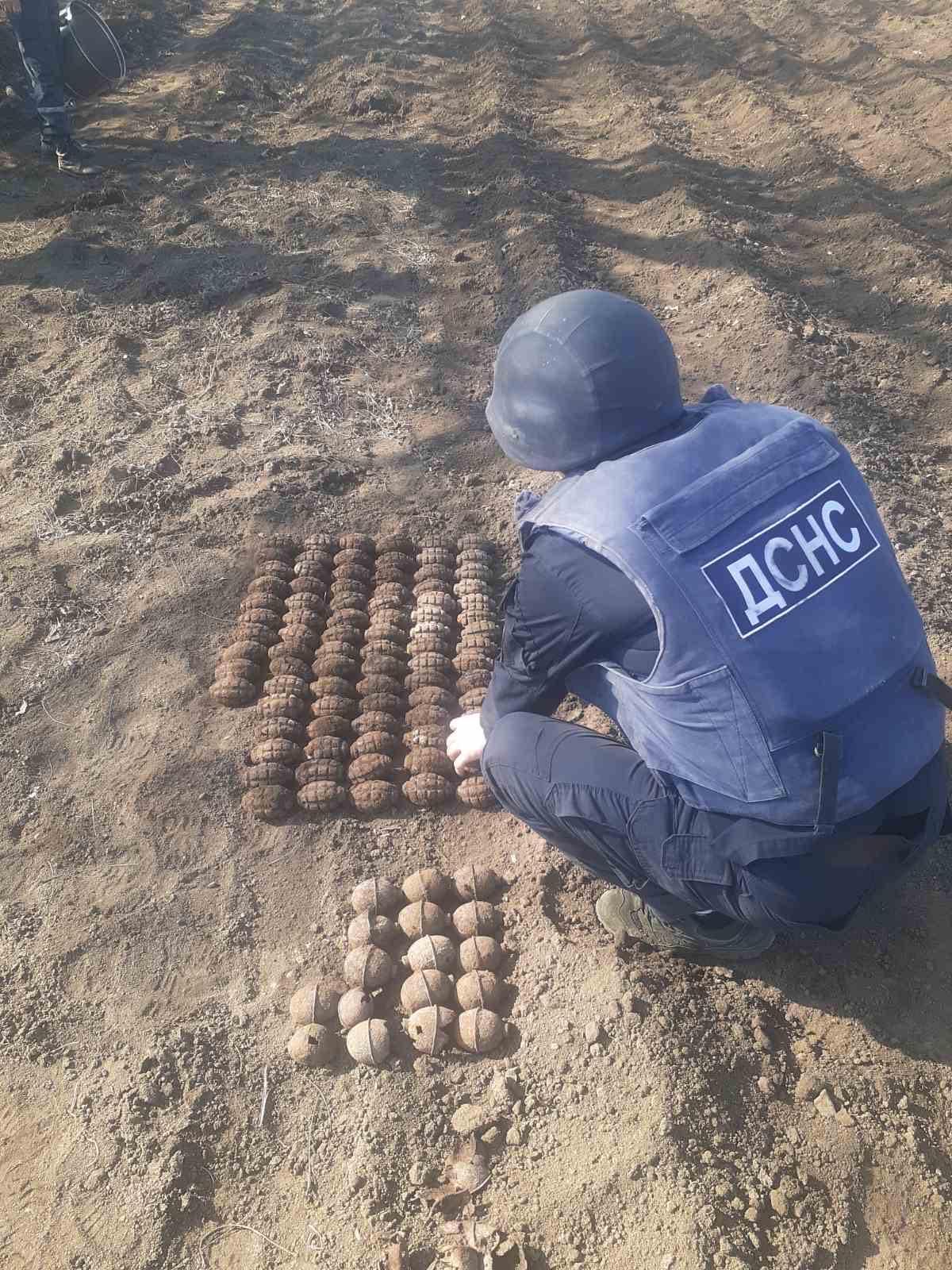 Піротехніки вилучили 102 гранати / Фото: ДСНС