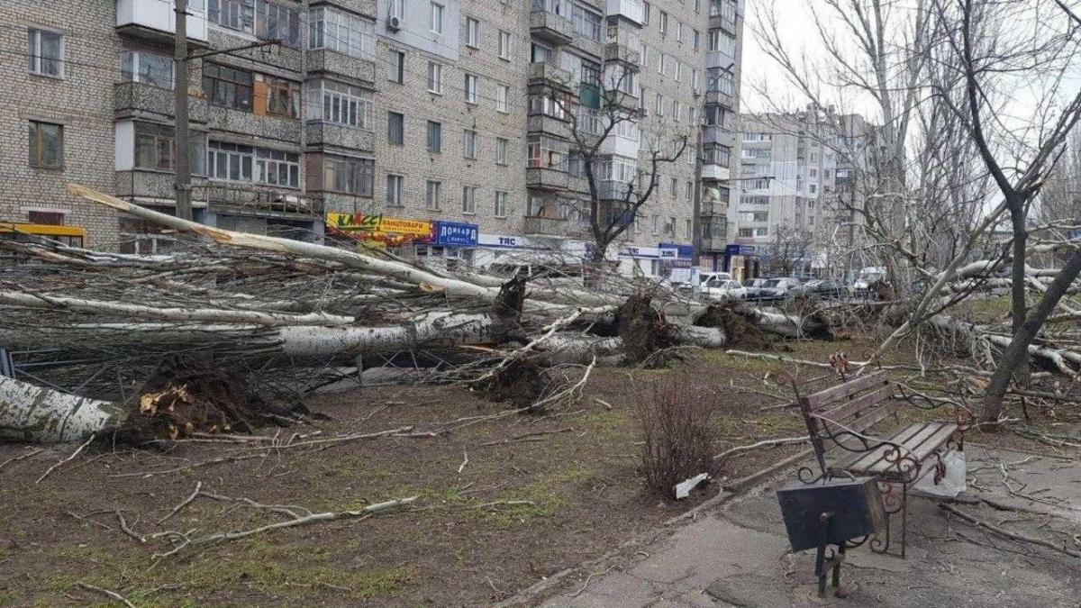 У Миколаєві вирує негода / фото Никвести