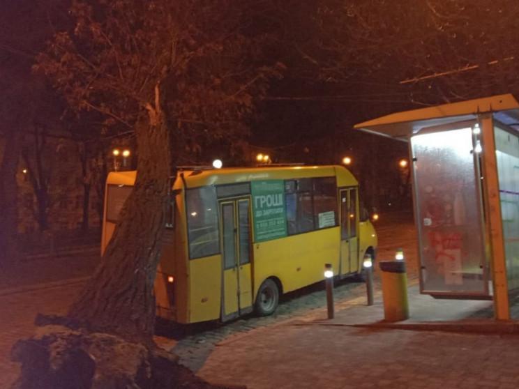 В центре Днепра дерево упало на маршрутку / фото ГУ ГСЧС Украины в Днепропетровской области
