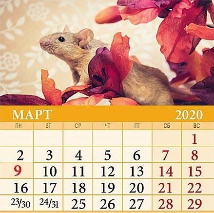Праздничные и рабочие дни – календарь на март 2020 / фото: deladomashnie.ru