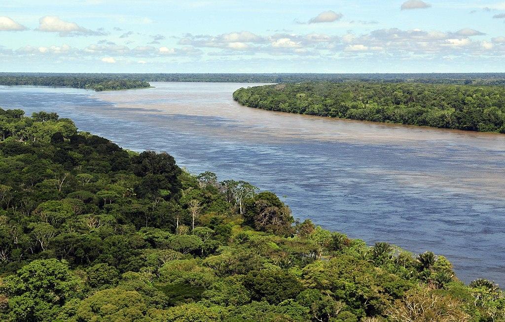 Дождевые леса Амазонии / Фото en.wikipedia.org