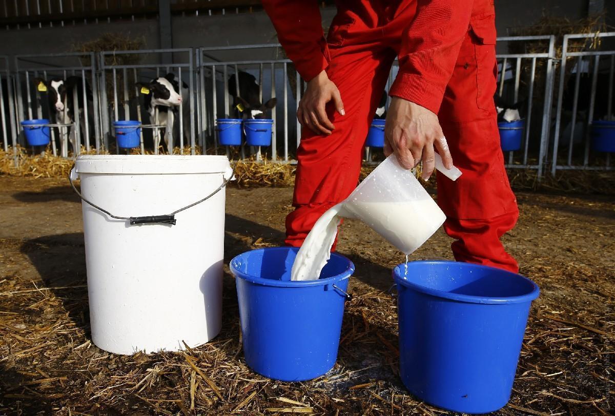 Еще в 2015 году Украина занимала первое место с потреблением более 119,8 кг молока на человека в год / Иллюстрация REUTERS