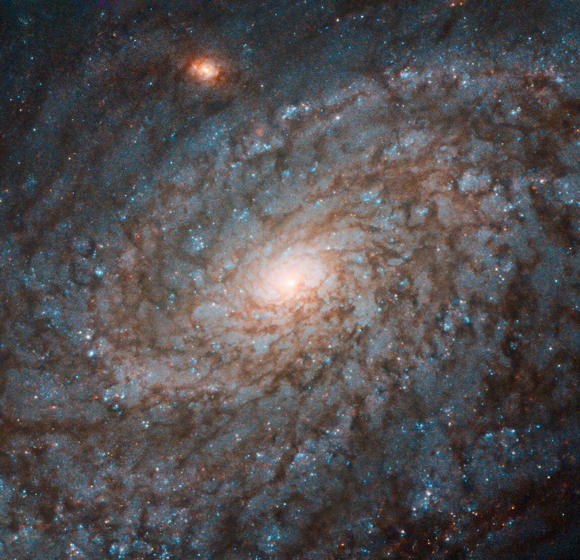 волар исследование галактик картинки зсд ныряем