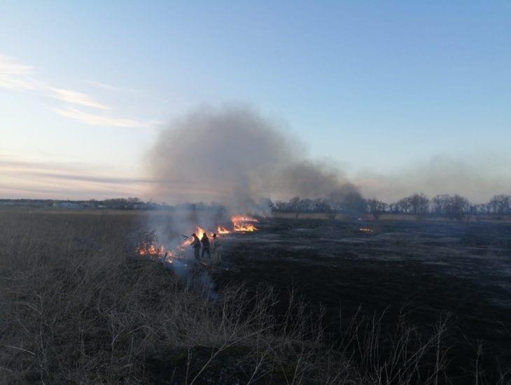 Пожарные боролись с огнем около часа \ ГСЧС