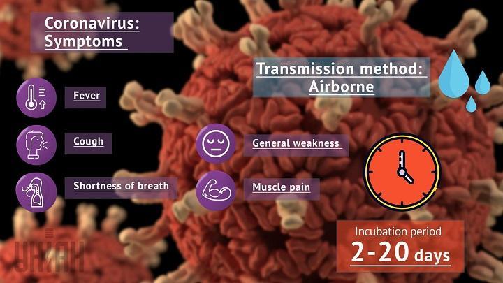 Coronavirus infographics by UNIAN
