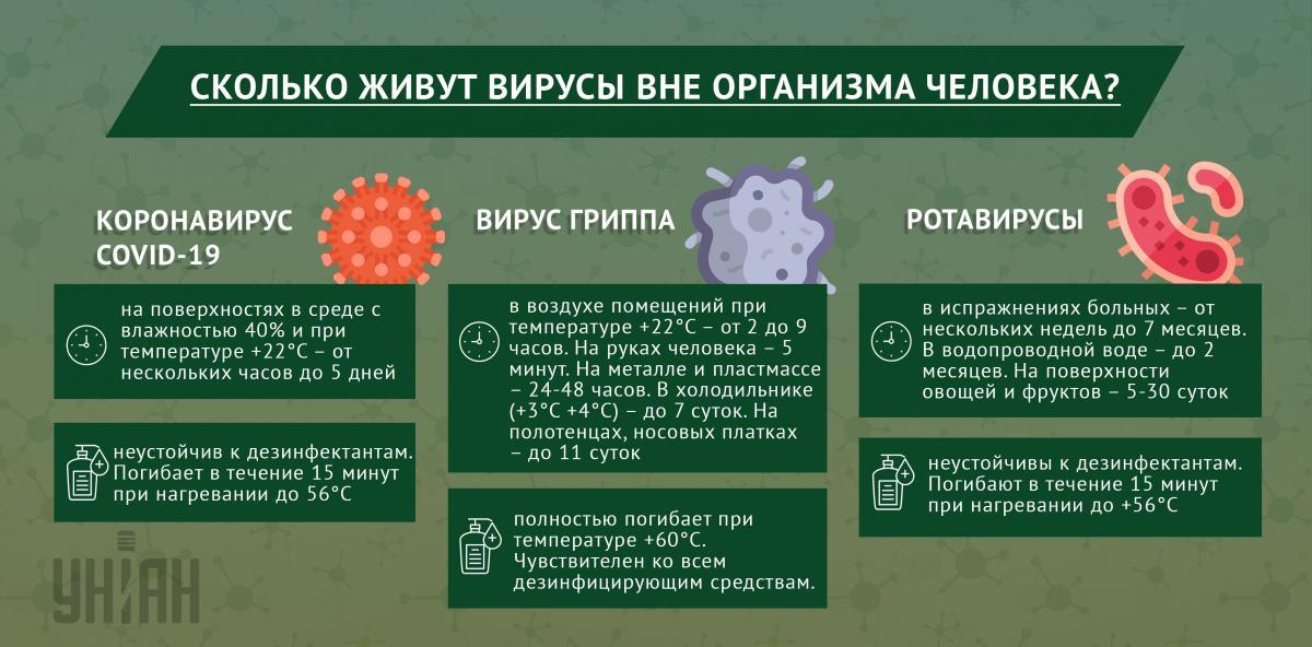 Сколько живут вирусы вне организма человека / инфографика УНИАН