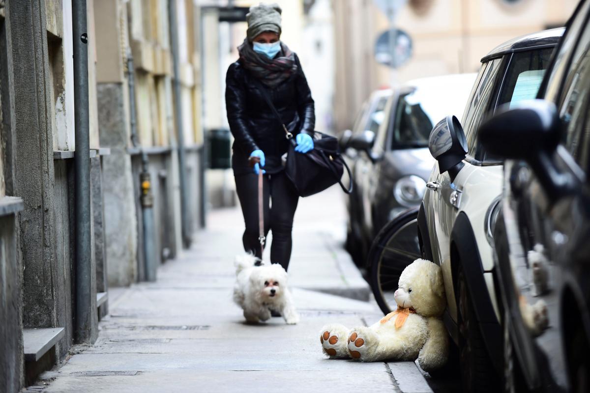 Нападник не прибрав за своїм собакою / Ілюстрація REUTERS