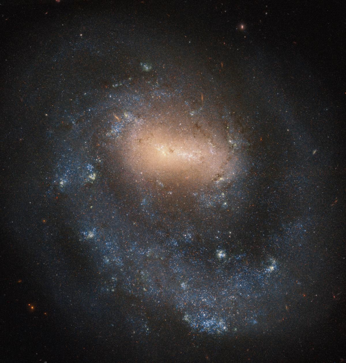 Галактику открыл 9 апреля 1787 года Уильям Гершель / фото ESA/Hubble & NASA, I. Karachentsev