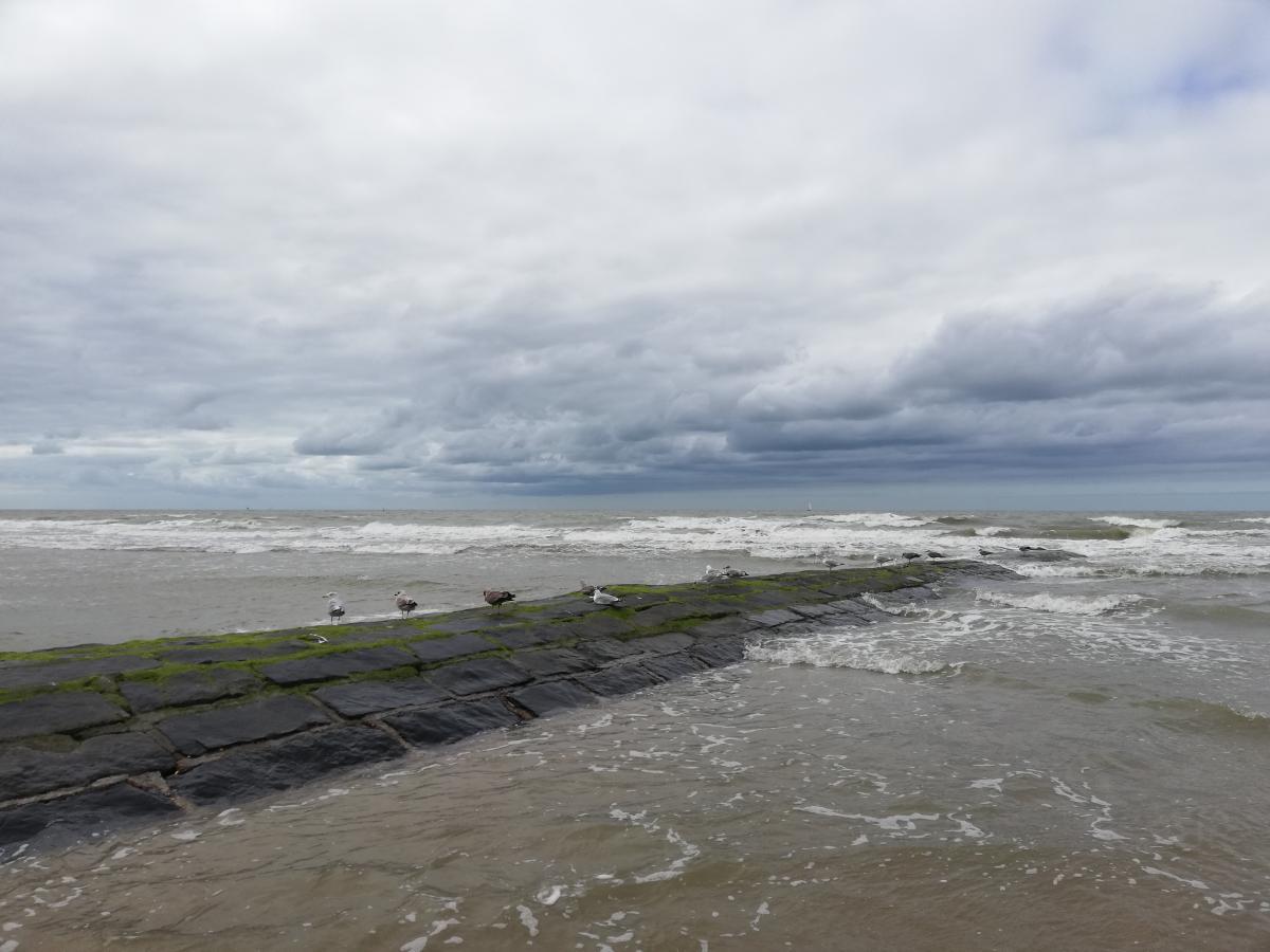 Набережная Северного моря в Вендуине / Фото Марина Григоренко