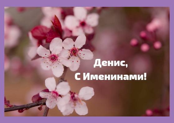День Дениса картинки