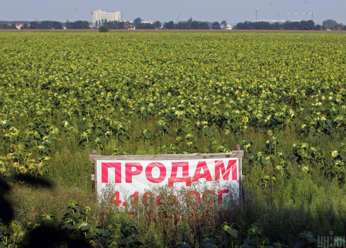 Верховная Рада приняла закон о рынке земли в Украине / фото УНИАН