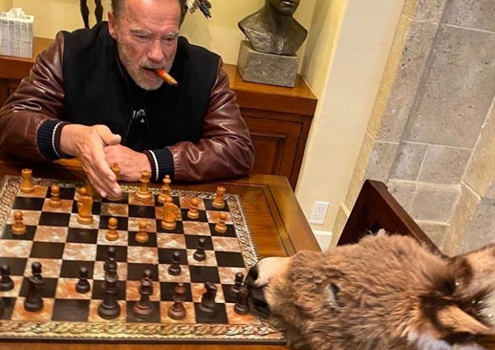 Арнольд грає в шахи з Лулу / instagram.com/schwarzenegger