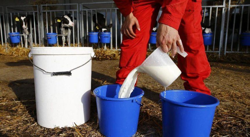 Виробники молока та м'яса готові знизити ціни: названо умову