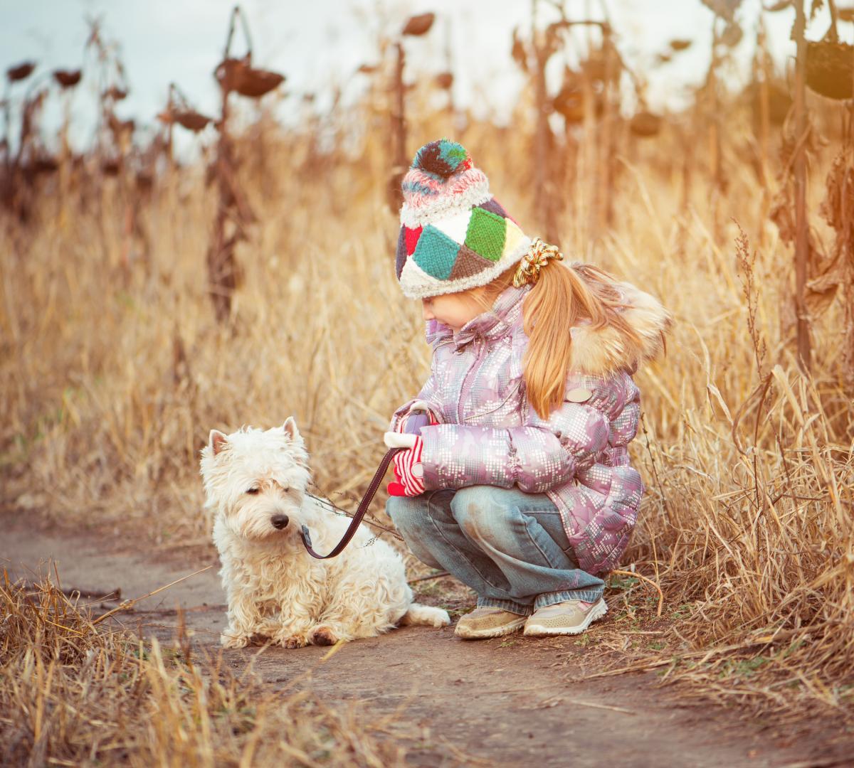 Комаровський обурився тим, що собаку в парку можна вигулювати, а дитинутепер не можна / фото: ua.depositphotos.com