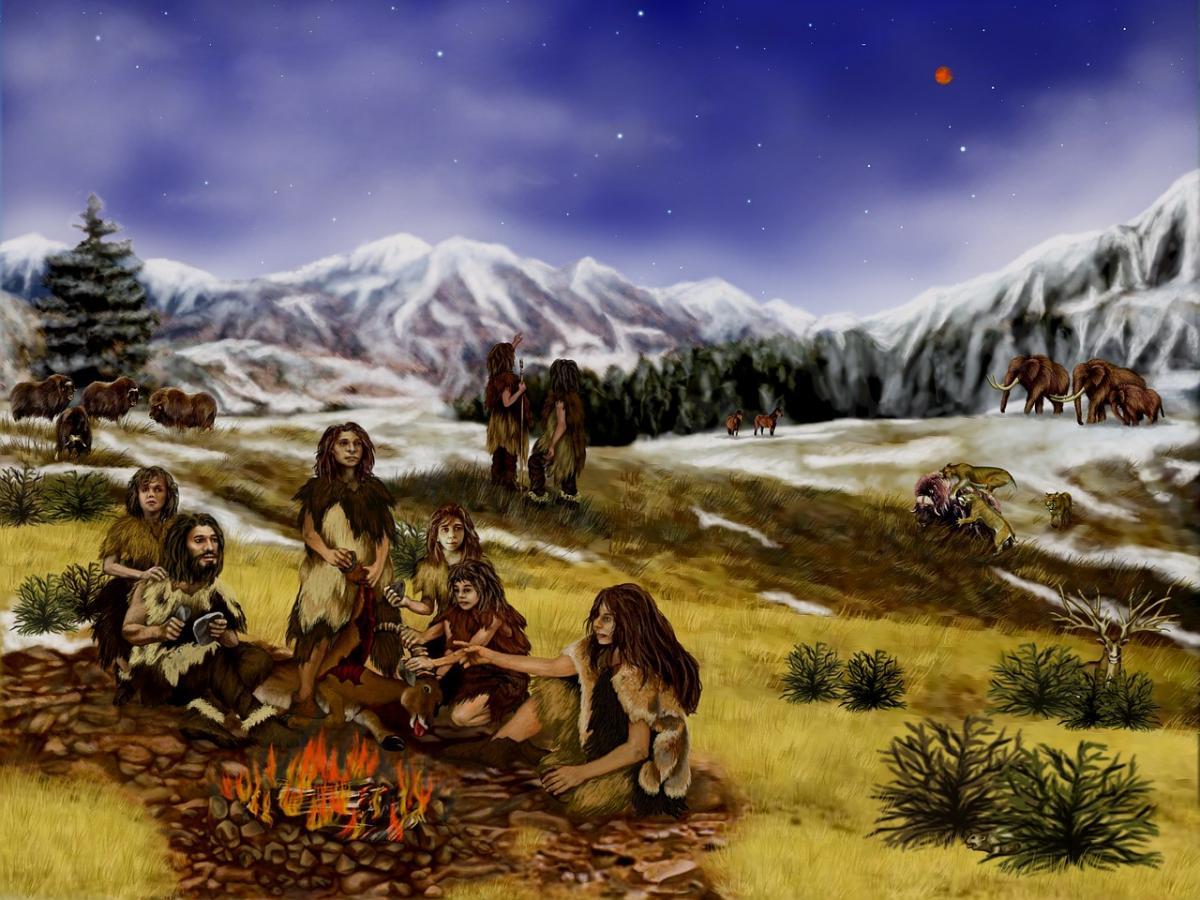 Ученые заявили о существовании двух ветвей потомков такого скрещивания - в Азии и Европе / pixabay